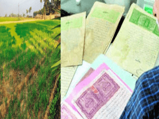 uttarakhand-government-order-issued-occupiers-of-class-three-and-four-got-ownership-of-land